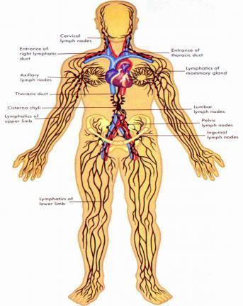 Healing Sensation Massage Therapy in Folsom CA